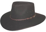 The Brown Cattleman Hat